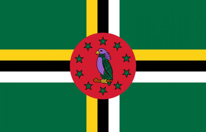 dominica-flag-medium